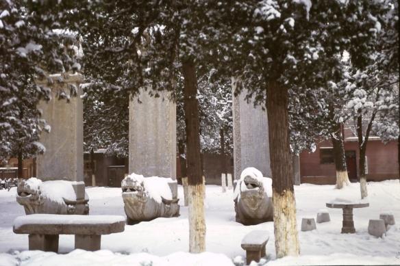 Beijing Language Institute Weihnachten in Peking