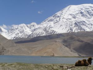 2007 Karakul-See