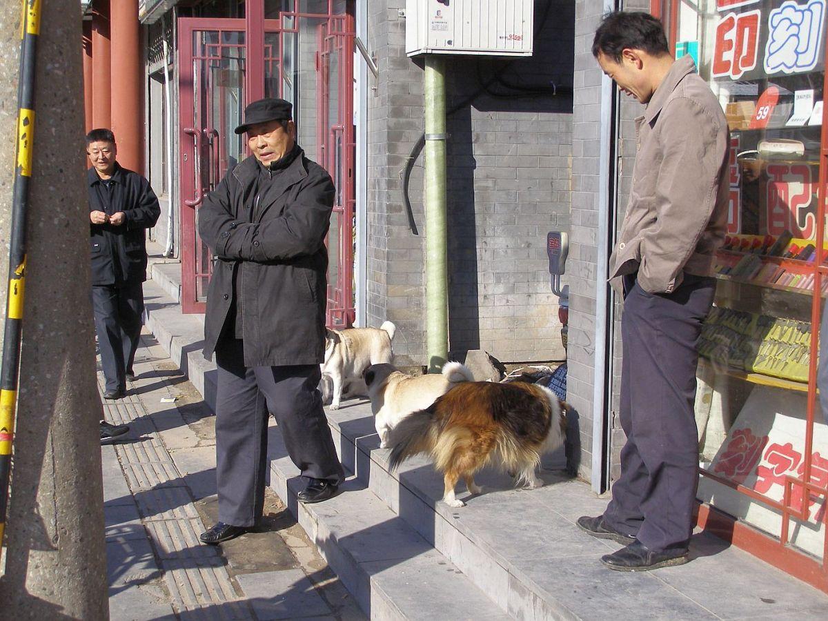 Xicheng Hutongs - Klönschnack an der Fuchengmennei-Straße.