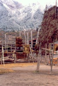 Jiu Dorf Schnee