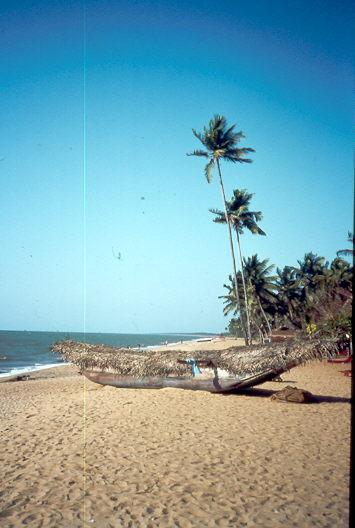 Stand von Negombo, Sri Lanka