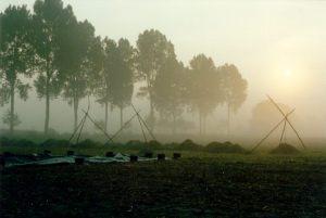 Das Ausgrabungsgelände am frühen Morgen