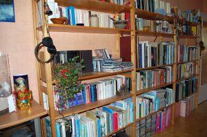 Mein Bücherregal im Wohnzimmer
